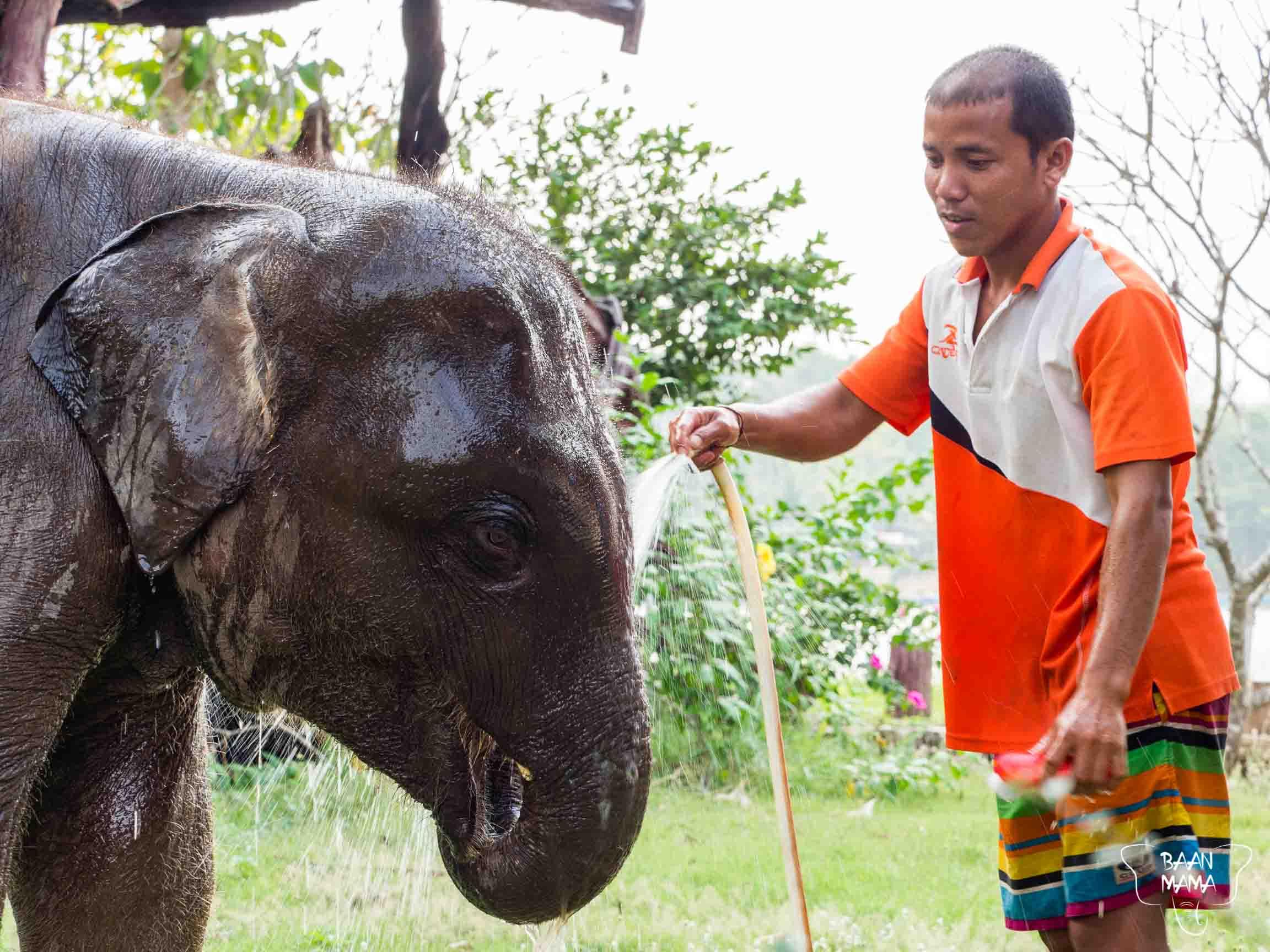Chumphon Baan Mama Elephant Kanchanaburi Thailande